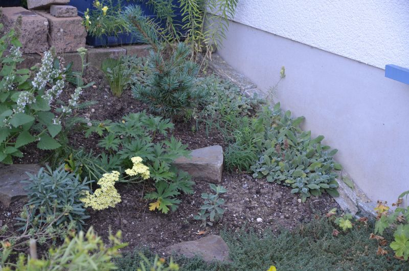 Garten Pur Forum : steingartenecke gestalten geh lz ~ Lizthompson.info Haus und Dekorationen